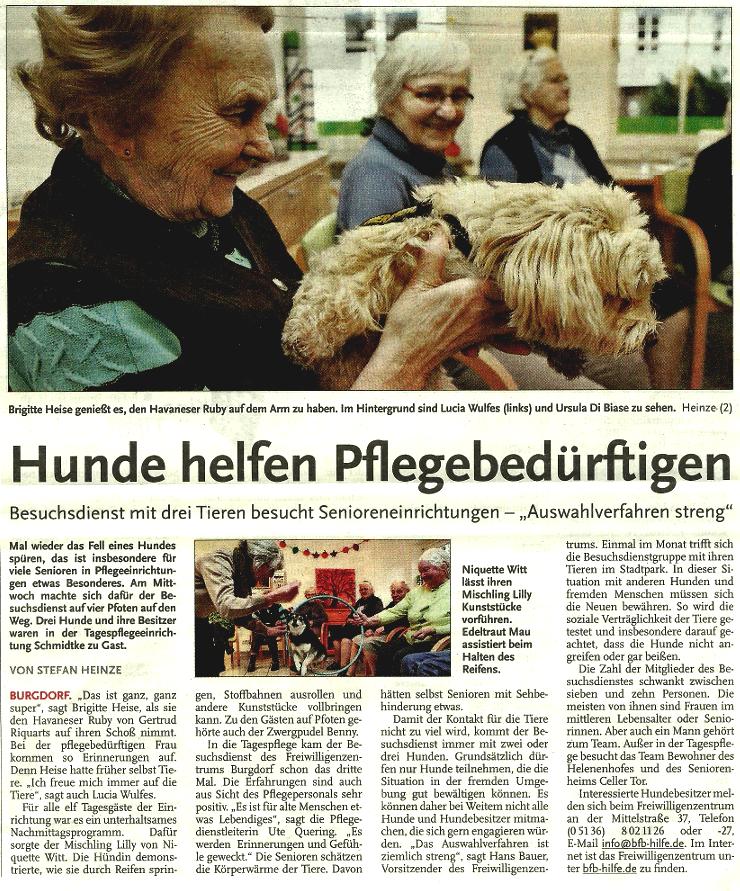 hunde_helfen